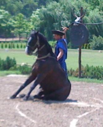 Sentado caballo